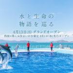 "【香川 6/1営業再開】四国最大級の水族館『四国水族館』 – [Kagawa June 1 reopen] ""Shikoku Aquarium"""