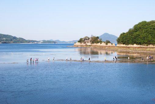 甘崎城 - Amazaki Castle