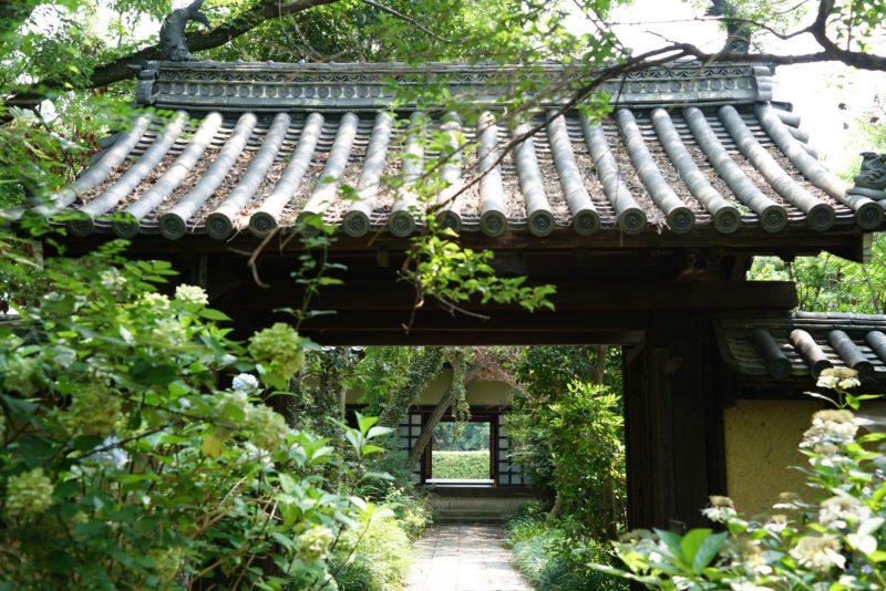 【香川】重森三玲『無染庭』四国遍路86番札所 志度寺 – [Kagawa] Mirei Shigemori designed garden at Shidoji Temple Garden