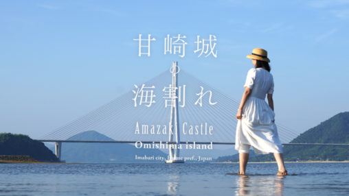 "Castle for Setouchi navies ""Amazaki Castle"""
