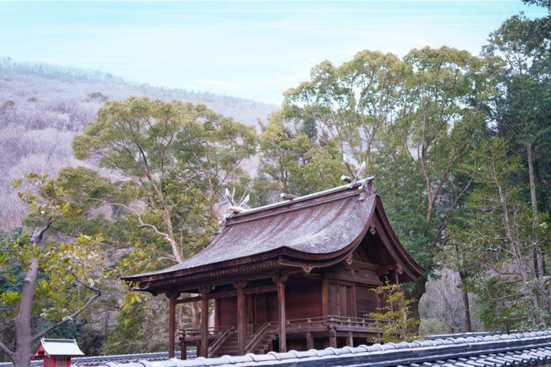 "【香川】日本最古の神社建築。国宝 神谷神社 本殿 - [Kagawa] National treasures ""Kandani shrine"""