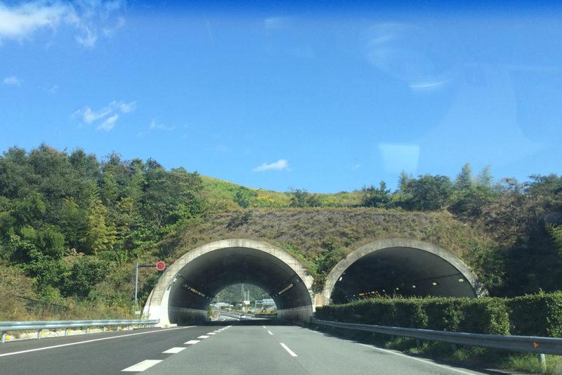 【徳島 国指定史跡】前方後円墳をトンネルが通る!『大代古墳(おおしろこふん)』 – [Tokushima / National Historic Site] Oshiro Kofun Ancient Tomb
