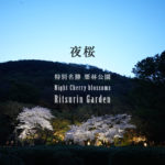 【香川 3/26-4/4】大名庭園 栗林公園、春のライトアップ – [Kagawa March 26th – April 4th] Night Cherry blossoms at Ritsurin Garden