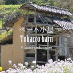 ベーハ小屋 – Tobacco barn