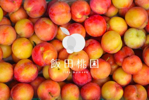 """【香川】古くからお遍路さんの喉を潤してきた桃『飯田桃園』 - [Kagawa] Plum and Peach orchard """"Īda Peach Farm"""""""