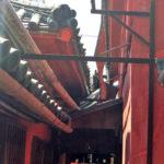 日本で唯一むしろ麹製法が残る醤油屋『かめびし醤油』 – Kamebishi soy sauce