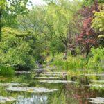 【高知】マルモッタン モネの庭 モネ 高知 北川村 – [Kochi pref.] Monet's Garden Marmottan in Kitagawa Village