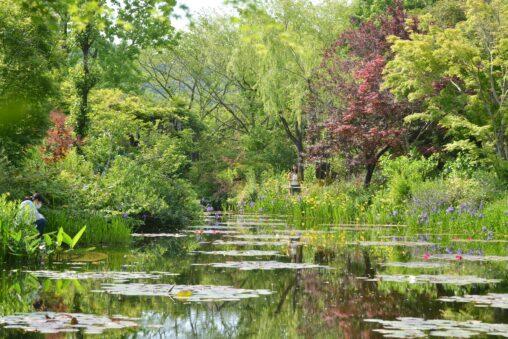 【高知】マルモッタン モネの庭 モネ 高知 北川村 - [Kochi pref.] Monet's Garden Marmottan in Kitagawa Village