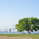 【香川県指定史跡】沙弥島、ナカンダ浜 – [Historic site by Kagawa pref.] Nakandahama beach of Shamijima island